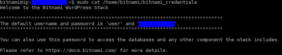 Bitnami password
